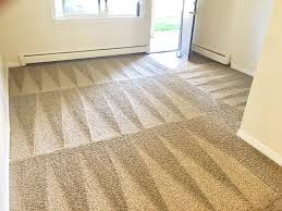 carpet cleaning at home solution